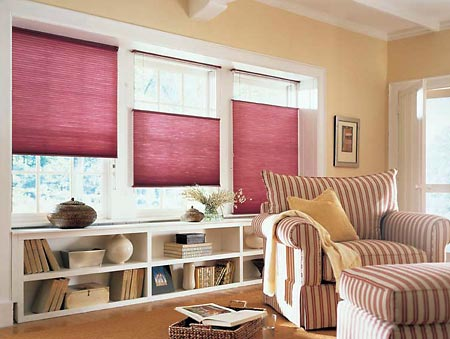 Anthem AZ Cellular Shades