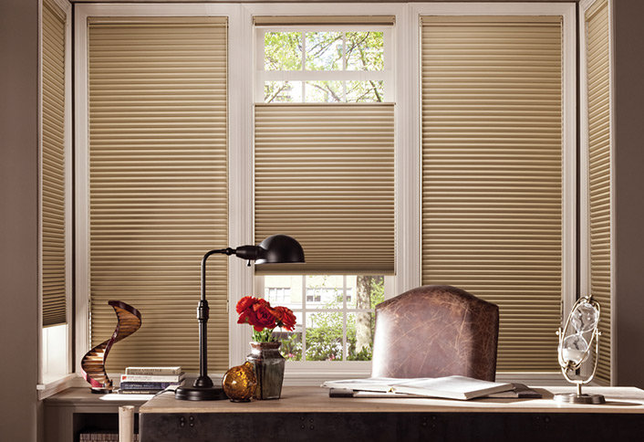 Refreshing Anthem Window Coverings for Spring